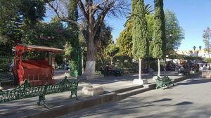 Plaza with trees and benches in the city center.