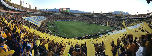 Fans cheering their soccer team at the Tigres stadium.