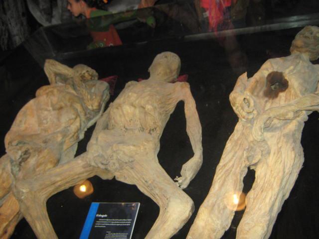 Three mummies at a museum.