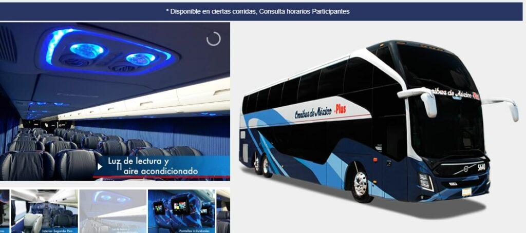 Omnibus de Mexico Primera Plus bus