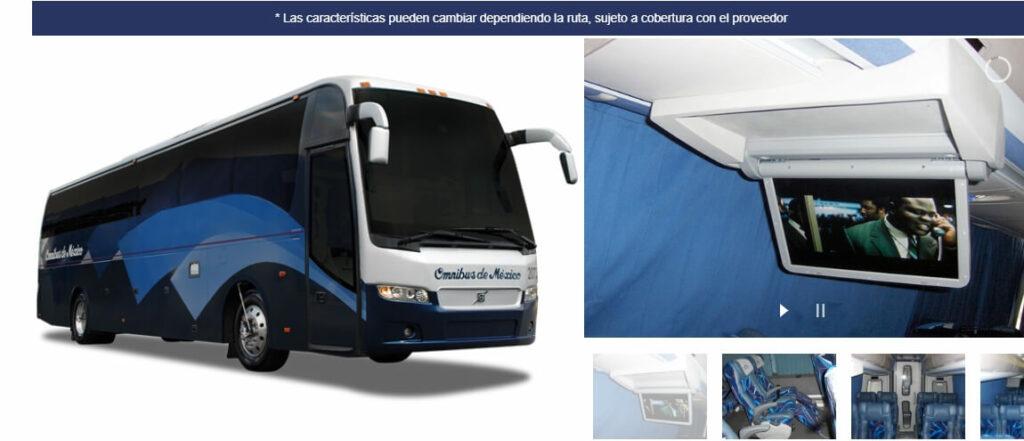 Omnibus de Mexico Primera bus