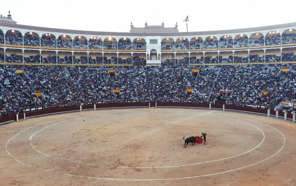People watching a bullfight.