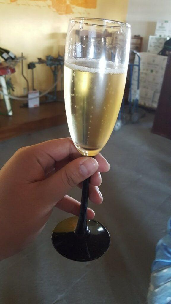 A hand holding a glass of sparkling wine.