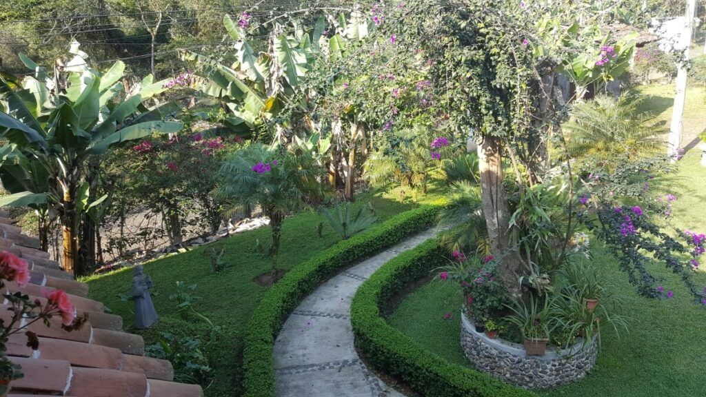 View of the garden from a terrace.